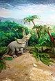 ماکت دایناسور تریسراتوپس، موزه تاریخ طبیعی استان قم (Triceratops).jpg