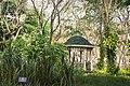 สวนสมุนไพร สมเด็จพระเทพรัตนราชสุดาฯ Herb Garden Princess Maha Chakri Sirindhorn's - panoramio - Thaweesak Churasri (10).jpg