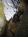 อุทยานแห่งชาติน้ำตกพลิ้ว จ.จันทบุรี (15).jpg