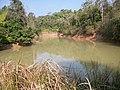 อุทยานแห่งชาติเขาใหญ่ Khao Yai National Park - panoramio (8).jpg