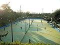 三ツ沢公園 - panoramio.jpg