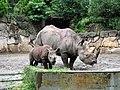 上野動物公園, Ueno Zoo(Ueno Zoological Gardens) - panoramio (28).jpg