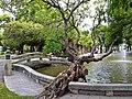中山公園水池橋樑(屏東公園)-3.jpg