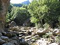 云蒙山 - 山涧溪流 - panoramio.jpg