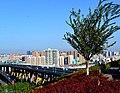 从雅玛里克山眺望市区.jpg