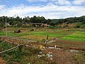 凤洋村 - Fengyang Settlement - 2015.10 - panoramio.jpg