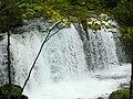 奧入瀨川 Oirase River - panoramio (1).jpg