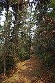 山景 - panoramio (20).jpg