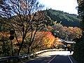 栂尾 - panoramio (2).jpg