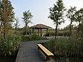 水上森林景区 - Floating Forest - 2015.10 - panoramio.jpg