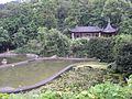 沁春园景色 - panoramio.jpg
