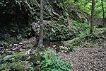 白岩の滝 - panoramio (10).jpg