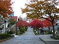 秋の大三坂 - panoramio.jpg