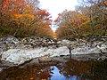 한라산의 가을 둘레길3.jpg
