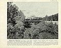 050 Деревянный мост томской ветви.jpg