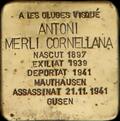 05 Les Oluges - ANTONI MERLÍ CORNELLANA.png