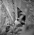 06.06.61 Procès Tournerie des Drogueurs, arrivée des accusés (1961) - 53Fi928.jpg