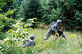 173rd ABCT Soldiers react to contact during a squad exercise during Rapid Trident 2011 (5988243012).jpg