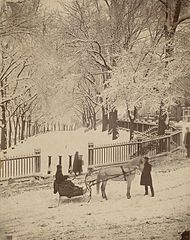 1870s Snow BostonCommon JJHawes MFABoston.jpg