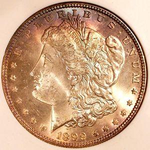 1899 Morgan Silver Dollar obverse