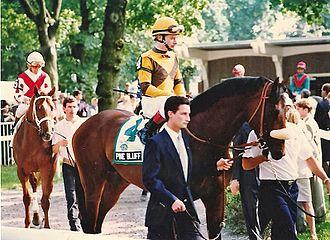 Pine Bluff (horse) - Image: 1992Pine Bluff 2