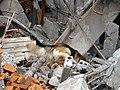 2008년 중앙119구조단 중국 쓰촨성 대지진 국제 출동(四川省 大地震, 사천성 대지진) SV400391.JPG