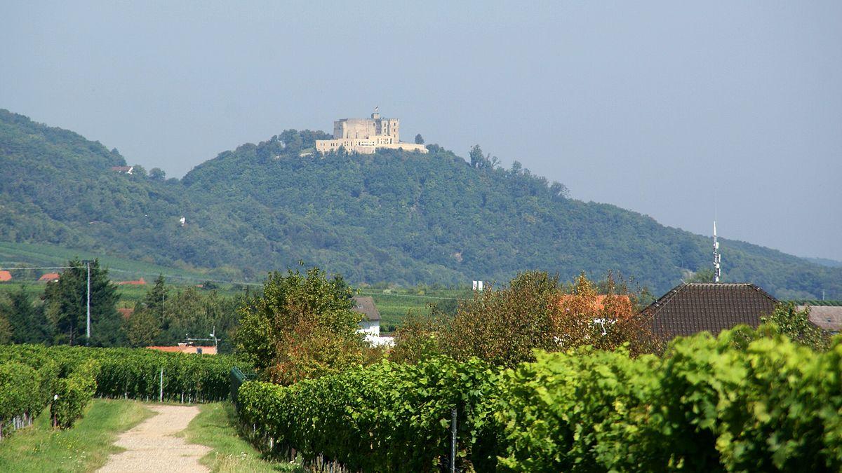 Schlossberg (Hambach) – Wikipedia