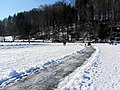 2012 'Seegfrörni' - Türlersee - Hausen am Albis 2012-02-18 12-55-11 (SX230).JPG
