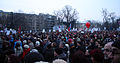 2013 Slovene uprising - crowd.jpg