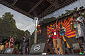 20140704-TFF-Black-Warriors+Analog-Africa-4620.jpg