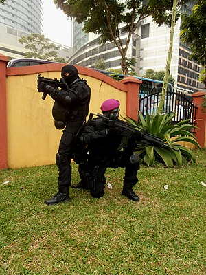 PASKAL - PASKAL commandos with MP5K-A5 and G36V.