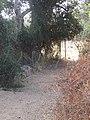 2017-10-12 Stone bridge over a stream, Val da Azinheira, Albufeira (1).JPG