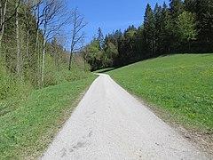 2019-04-25 (101) View from Bichlhäusl to north, Haltgraben, Frankenfels, Austria.jpg