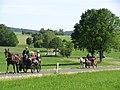 21te Rammenauer Schlossrundfahrt der Pferdegespanne (017).jpg