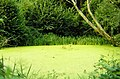 25340 Crosey-le-Grand, France - panoramio (10).jpg