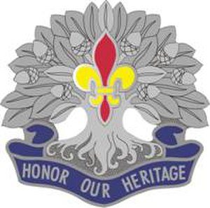 256th Infantry Brigade Combat Team (United States) - Image: 256IBCTDUI