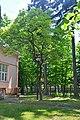 46-101-5018 Lviv Rudnytskoho 25 Magnolia Kobus RB 18.jpg