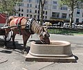 6th Av CP entrance horse trough jeh.JPG