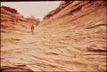 A HIKER IN THE MAZE, A REMOTE AND RUGGED REGION IN THE HEART OF THE CANYONLANDS. IN THESE WILD SECTIONS THERE ARE NO... - NARA - 545759.tif