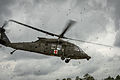 A U.S. Army UH-60 Black Hawk helicopter hovers above the Geronimo Landing Zone during the Joint Readiness Training Center 14-05 exercise rotation at Fort Polk, La., March 15, 2014 140315-F-XL333-202.jpg