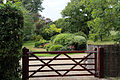 A shrub garden and lawn behind a gate at Theydon Mount Essex England.JPG