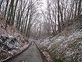 Aarschot Gelrode Eikelberg Holle weg tussen Eikelberg en Liedeberg - 196505 - onroerenderfgoed.jpg