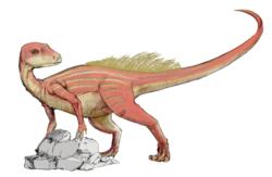 Un abrictosaure sur une pierre