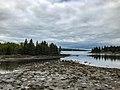 Acadia National Park (2a91d8f8-06a5-44f8-a965-7cc53c9a9346).jpg