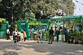 Acharya Jagadish Chandra Bose Indian Botanic Garden - Howrah 2011-01-08 9892.JPG