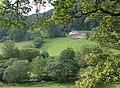 Across Cwm Cnyffiad, Powys - geograph.org.uk - 1498166.jpg