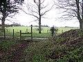 Across the driveway - geograph.org.uk - 1615464.jpg