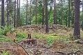 Adelöv 12-2, Vassrödjorna - KMB - 16001000260450.jpg