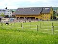 Affoltern - 'Gestüt' Unteraffoltern - Zehntenhausstrasse 2012-05-13 17-56-30 (P7000).JPG