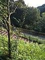 Akatsukayama-park - panoramio (1).jpg